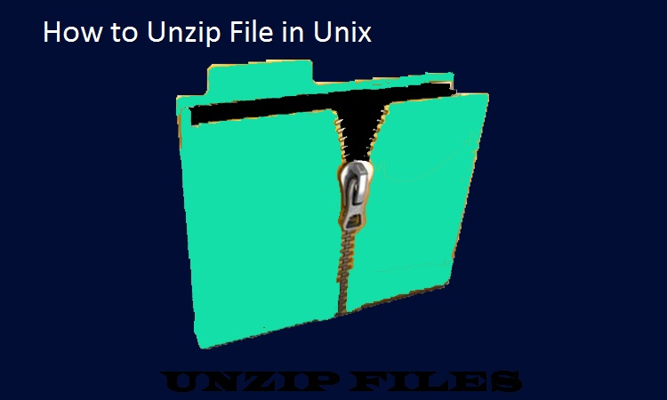 Unzip file in unix