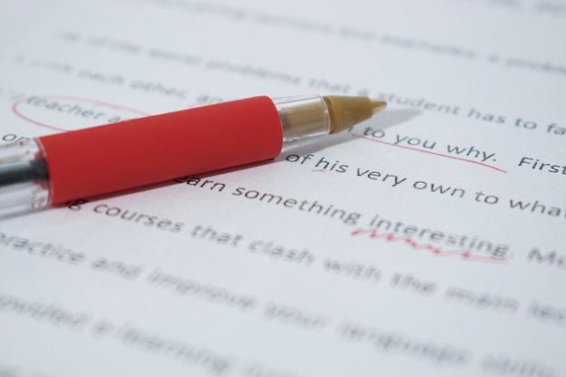 The best custom essay